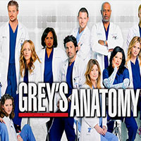 Grey's Anatomy estar de volta vem a 16º Temporada